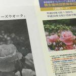 9042阪急阪神HDアイキャッチ画像