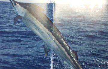 7596魚力アイキャッチ画像