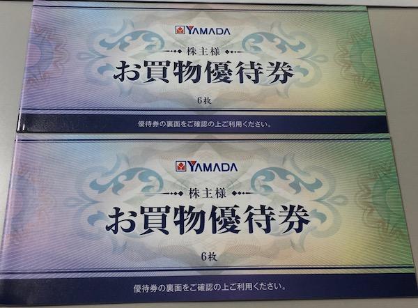9831ヤマダ電機2019年3月期株主優待券