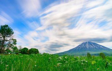 9534北海道瓦斯アイキャッチ画像